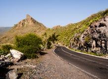 Skalisty krajobraz Tenerife fotografia royalty free