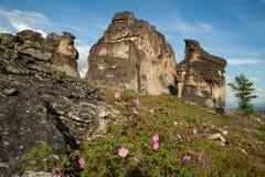 Skalisty krajobraz w górach fotografia stock