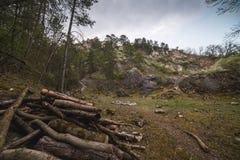 Skalisty krajobraz z stosem drewno obrazy royalty free
