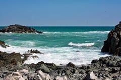 Skalisty morze Coast-3: Masirah wyspa, Oman Obraz Stock