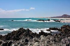 Skalisty morze Coast-4: Masirah wyspa, Oman Obraz Royalty Free
