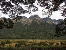 Skalisty moutian Nowa Zelandia zdjęcie stock