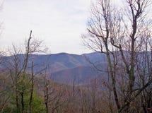 Skalisty Odgórny ślad Mountain View Fotografia Stock