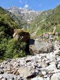 Skalisty riverbed w Nowa Zelandia na zachodnim wybrzeżu zdjęcia stock