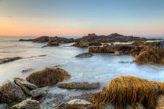 Skalisty Seascape Sachuest rezerwat dzikiej przyrody Obraz Stock
