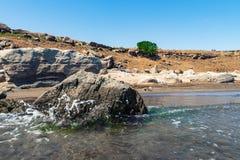 Skalisty seashore z jasną wodą i falami zdjęcie royalty free