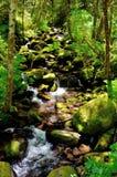Skalisty strumień łoś zatoczka W łotrzyka River†'Siskiyou lesie państwowym, Oregon Obrazy Stock