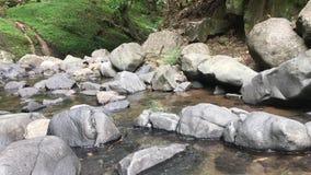 Skalisty strumień zbiory wideo