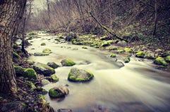 Skalisty strumień Fotografia Stock