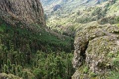 Skalisty wąwóz w losie angeles Gomera fotografia royalty free