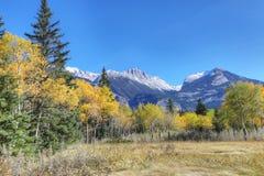 Skalisty widok górski z żółtymi osikami Obrazy Stock