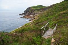 Skalisty wybrzeże krajobraz od zielonej łąki z przetwarzającym drewnianym mostem fotografia royalty free