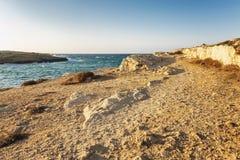 Skalisty wybrzeże, turkusowy morze z foamy wodą, bezchmurny niebo fotografia stock