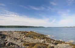 Skalisty wybrzeże Maine obrazy royalty free