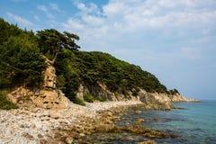 Skalisty wybrze?e morze Japonia obraz royalty free