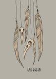 Skallar och fjädrar av ravensna Arkivfoto