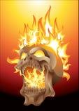 Skalle i flammor Royaltyfri Fotografi