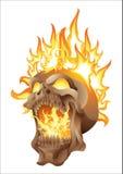 Skalle i isolerade flammor Royaltyfri Foto