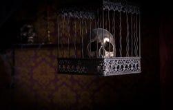 Skalle i utsmyckad bur i rum med den mönstrade väggen Arkivfoto