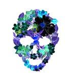 Skalle med blommor, fjädrar Vattenfärg i tappningbohostil Royaltyfri Foto