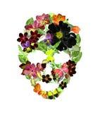 Skalle med blommor, fjädrar Vattenfärg i tappningbohostil Arkivfoto