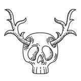Skalle med hjorthornillustrationen Arkivbild
