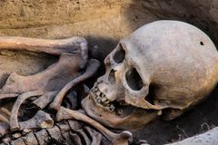 Skalle och ben av en person från den Scythian nationen som finnas av arkeologer arkivfoto