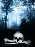 Skalle och ben i den mörka dimmiga skogen Arkivfoto