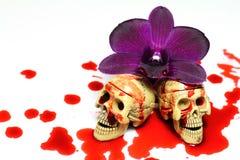 Skalle och blod Arkivfoto