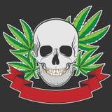 Skalle och cannabis Arkivbilder