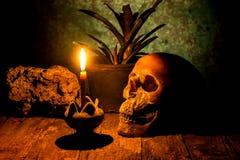 Skalle och stearinljus med ljusstaken på trä Fotografering för Bildbyråer