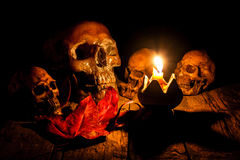 Skalle och stearinljus med ljusstaken på trä Arkivbilder