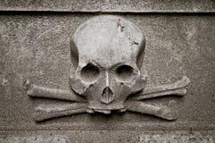 Skalle på gravstenen royaltyfri foto