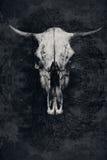 Skallen av en tjur med horn och trädet Royaltyfria Bilder