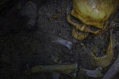 Skallen och ben digged ut från grop i den läskiga kyrkogården Gör n royaltyfri bild