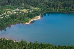 Skallerorm lake arkivfoto