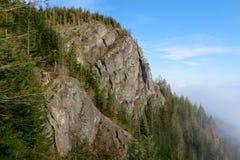 Skallerorm Ridge Royaltyfria Foton