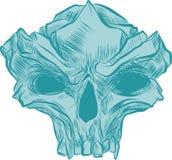 Skallevektorillustration, samling av hand drog skallar, konst för hård kärnaskallevektor vektor illustrationer