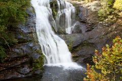 skallig flodvattenfall Royaltyfri Foto