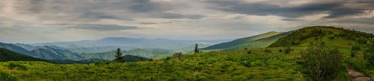 Skallig panorama av rundan och Jane Bald Arkivbilder
