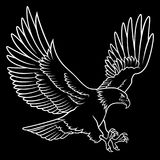 Skalliga Eagle 011 Arkivfoto