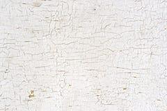 Skalning av målarfärg på väggen Royaltyfri Fotografi