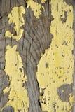 skalning av slågen träyellow Arkivfoto