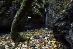 Skalny vodopad, Sokolia dolina, Slovensky raj, Slovakien royaltyfria bilder
