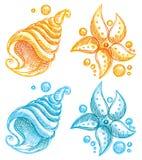 skalsjöstjärna Royaltyfria Bilder
