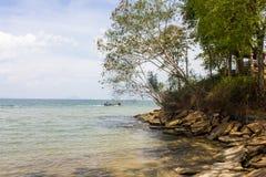 Skamieniała skorupy plaża Obrazy Royalty Free