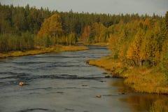 Skandinavien Lapland, höst, flod som är norr royaltyfri bild