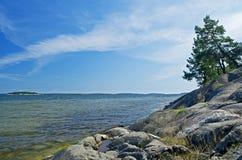 Skandinavische kustlijn Royalty-vrije Stock Foto