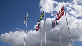Skandinavische Vlaggen stock footage