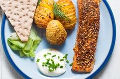 Skandinavische zalm met aardappels en ingelegde komkommer Stock Foto's